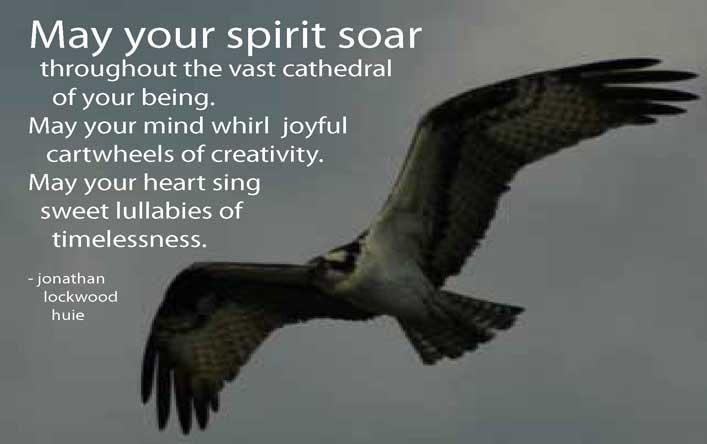 May Your Spirit Soar