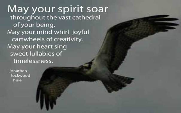 May Your Spirit Soar